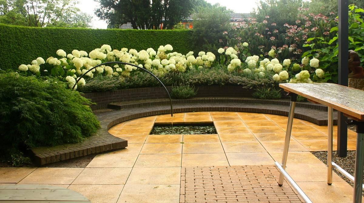 Неприхотливые многолетники для цветущего сада