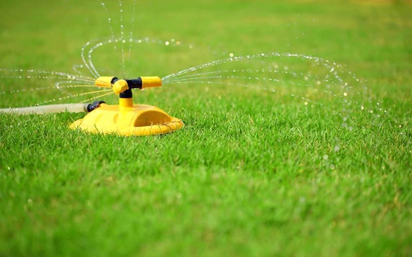 Выбор разбрызгивателей для полива огорода