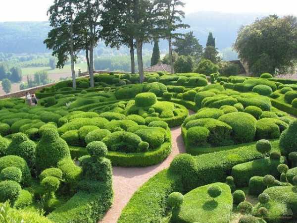Как создать сад своей мечты – советы дизайнера по перепланировке. создаем неприхотливый сад создание садов