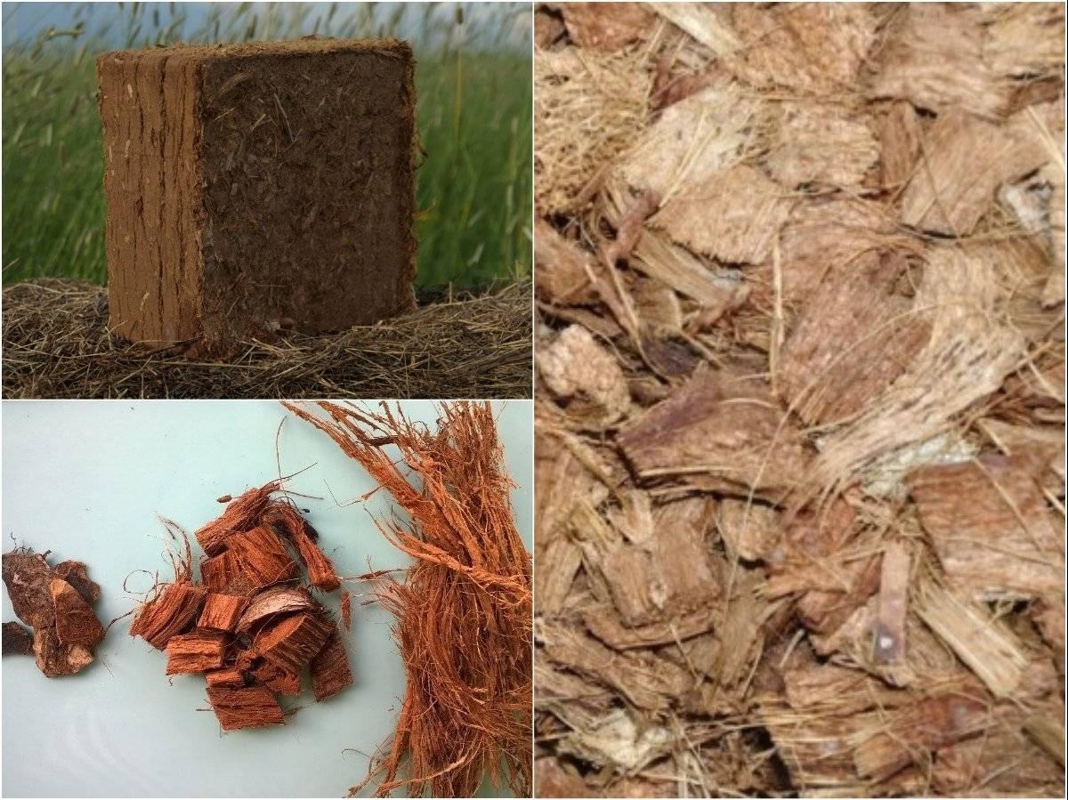 Кокосовый субстрат для растений – что это, для чего нужен и как применять