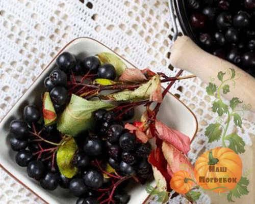 Компот из черноплодной рябины на зиму