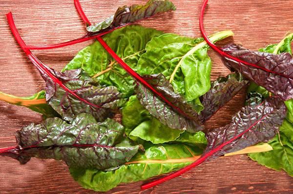 Что такое листовая свекла и как она еще называется? описание, фото, выращивание и уход