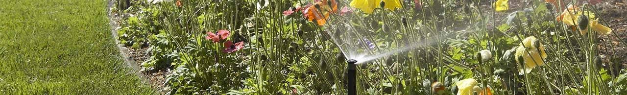 Автоматический полив газона – монтируем сами, чтобы система поливала за нас