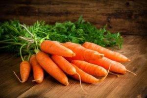 Польза и вред моркови
