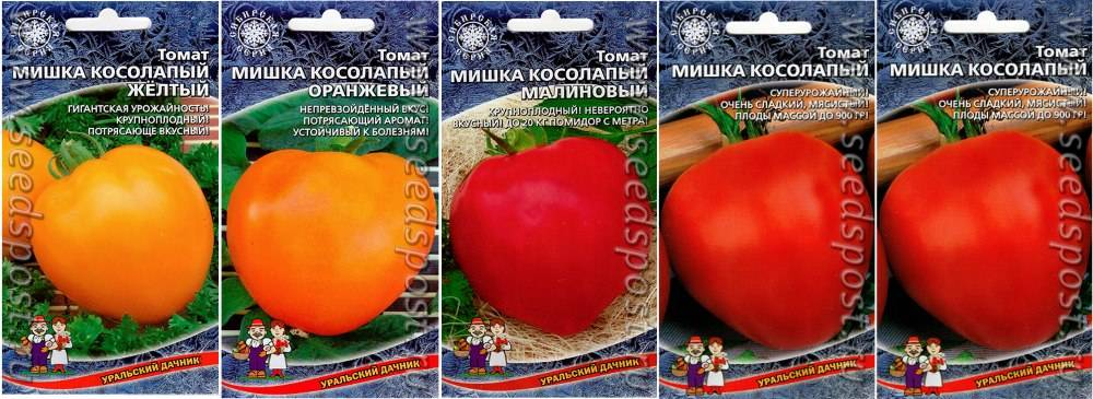 Изучаем особенности выращивания и ухода за шпинатом в открытом грунте