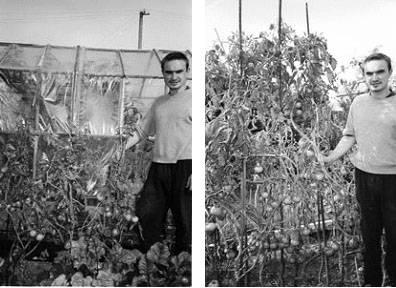 Универсальное удобрение — биогумус жидкий