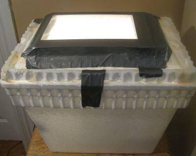 Автоматический инкубатор для яиц: принцип работы и как выбрать