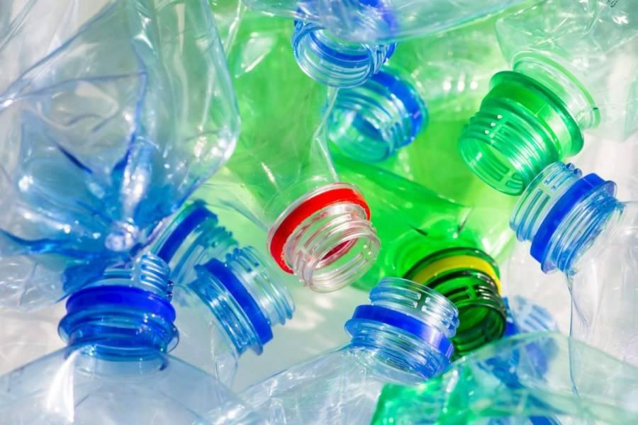 Применение пластиковых бутылок на огороде из личного опыта