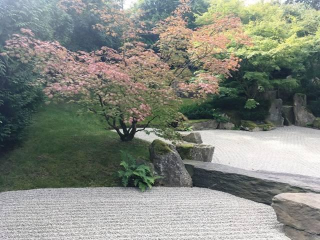 Советы по оформлению цветника и клумбы перед домом