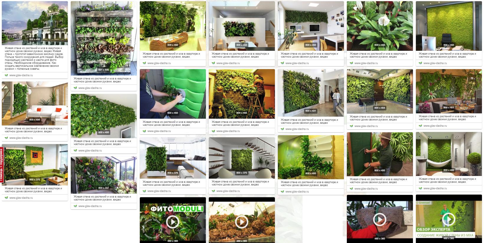 Оформление вертикального озеленения в квартирах