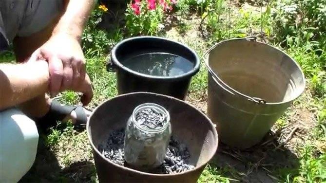 Вытяжка из золы для подкормки растений: правила и способы приготовления
