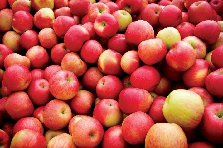 Компот из яблок на зиму: рецепты на 3 литровую банку
