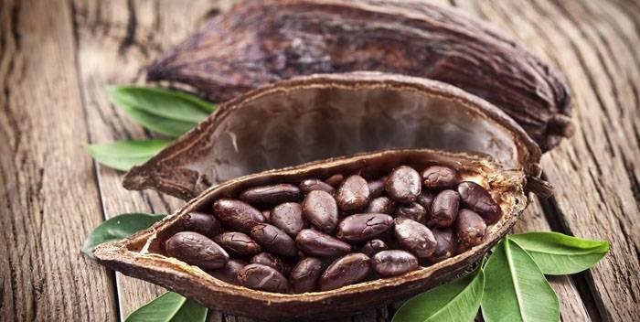 Бобовые продукты: польза и вред