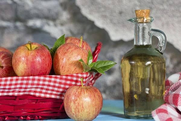 Мед и яблочный уксус: универсальное целебное средство