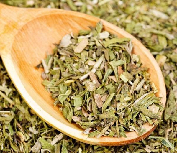 Трава тархун: полезные свойства и вред, тонкости применения, состав