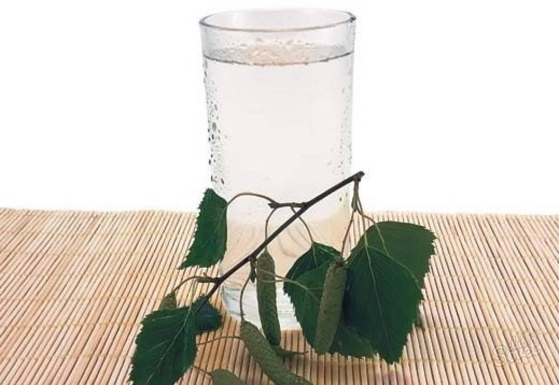 Как сделать вино из березового сока. Рецепты: домашнее вино Березовик.