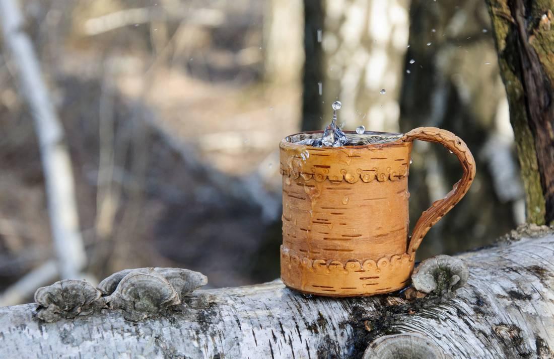 Берёзовый сок — польза и вред
