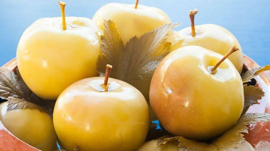 Мочёные яблоки. простые рецепты заготовки в бочке и банках