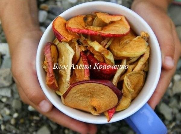 Сушеные яблоки надолго: как правильно сберечь сухофрукты