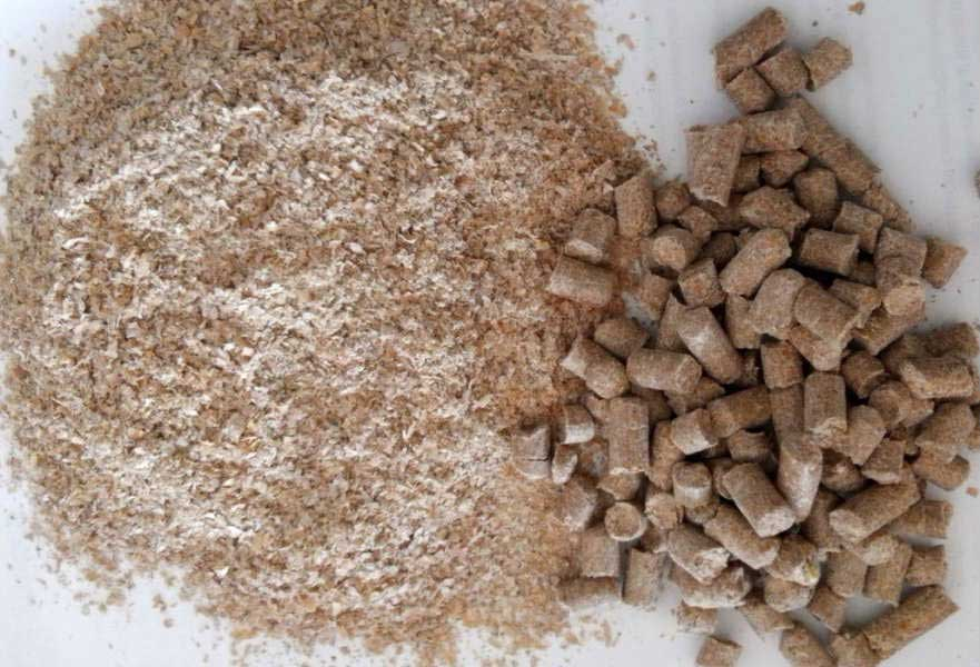 Польза и вред пшеничных отрубей, как правильно принимать?
