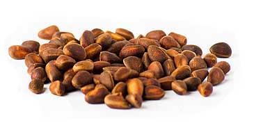 Полезные свойства кедровых орехов: для мужчин, женщин и в целом для организма