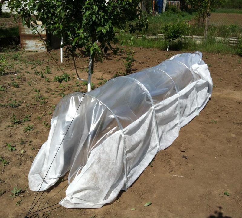 Как подготовить грядки под огурцы в открытом грунте
