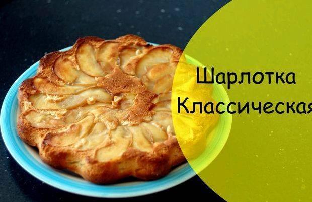 Шарлотка классическая с яблоками в духовке пышная
