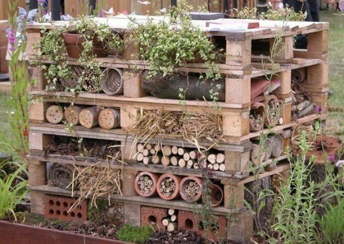 Полезные насекомые и животные на даче и огороде.