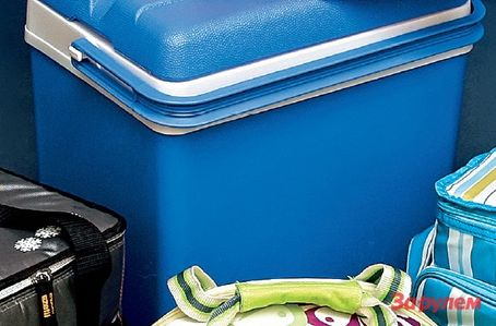 Как правильно выбрать сумку-холодильник для автомобиля