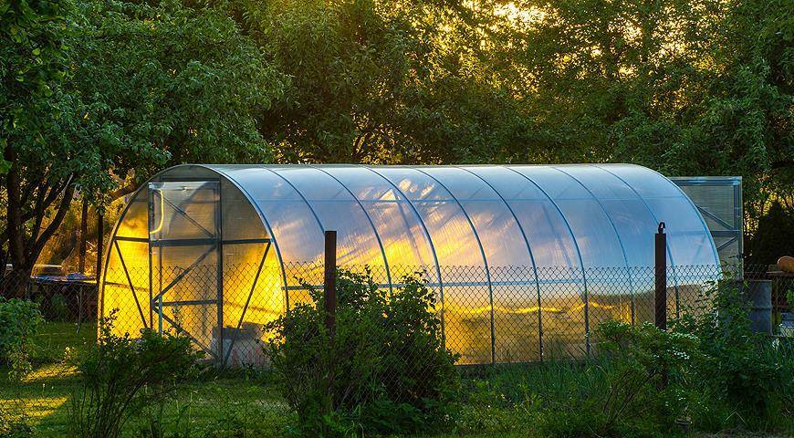 Какой толщины лучше выбратьполикарбонат для теплицы, навеса, крыши – отзывы, листовой, волнистый, сотовый поликарбонат – размеры для крыши теплицы