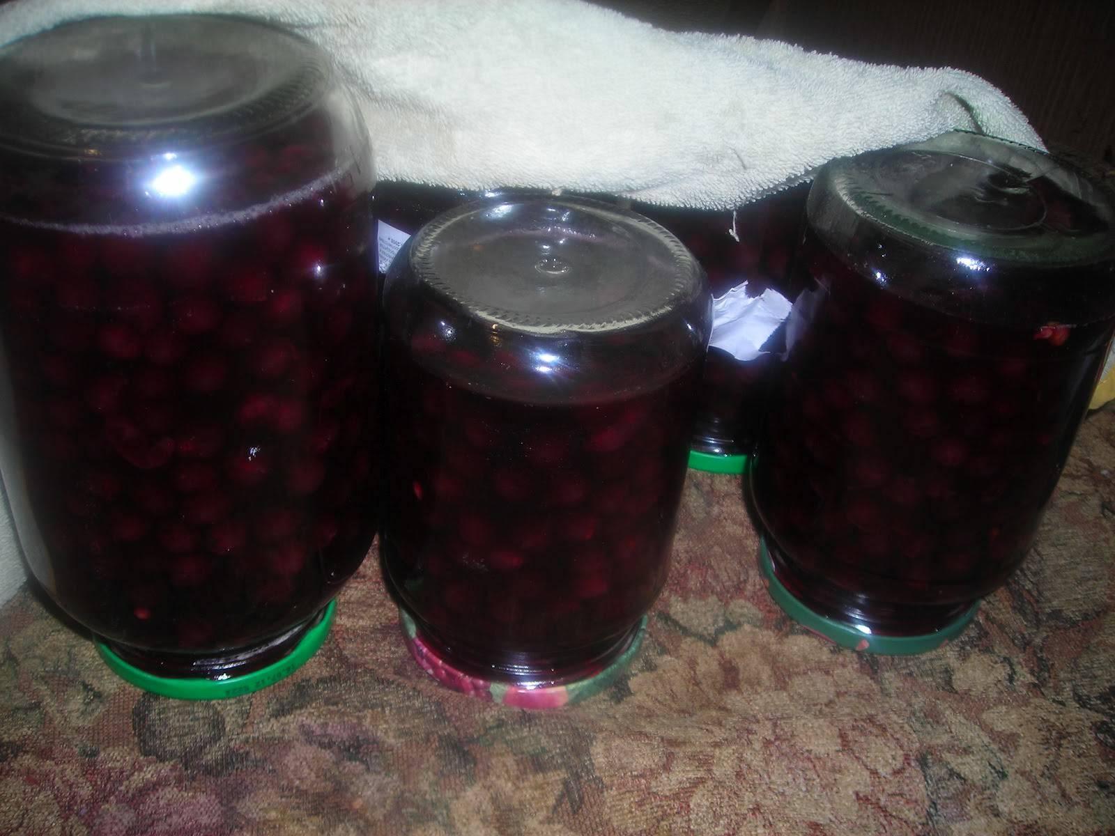 Виноградный сок в домашних условиях: лучшие рецепты витаминного напитка