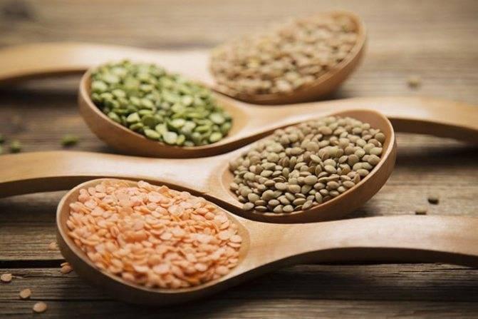 Полезные свойства чечевицы и состав витаминов