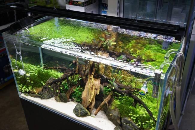 Как сделать led-лампу для аквариума своими руками: пошаговая инструкция