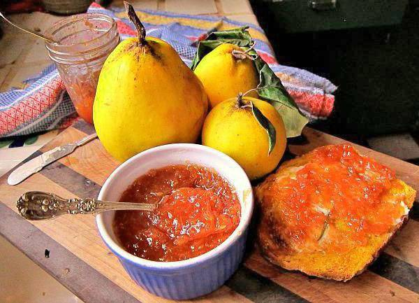 Самые простые и вкусные рецепты джема из айвы