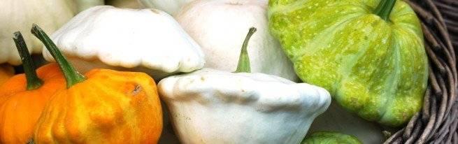 Патиссоны — выращивание в открытом грунте