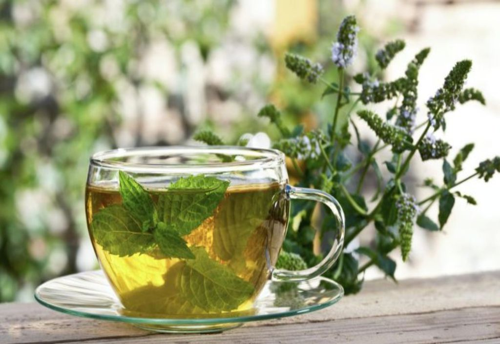 Польза облепихового чая: рецепты облепихи с имбирем и апельсином