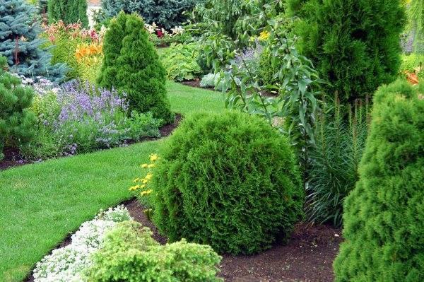 Принципы планировки сада и огорода на загородном участке