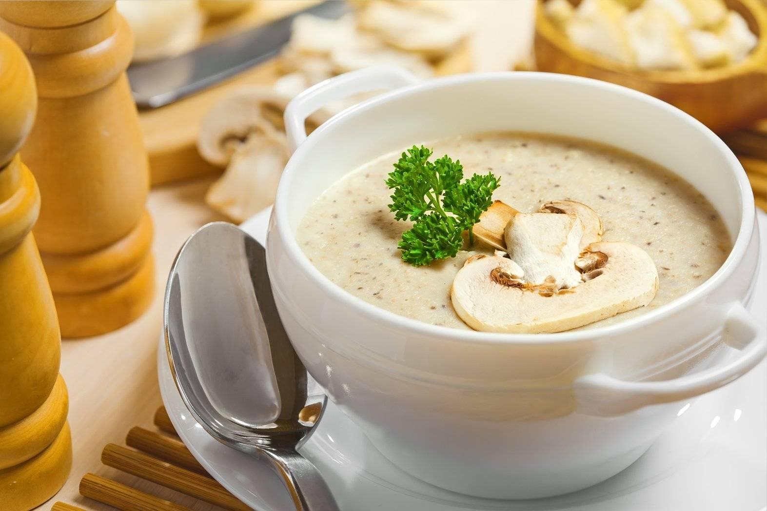 Суп-пюре — пошаговые рецепты приготовления в домашних условиях