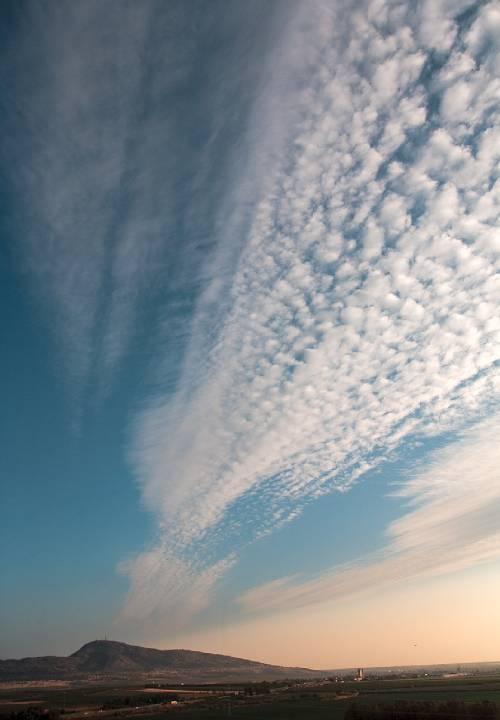 Знаки природы, прогнозирующие погоду, поведение животных, птиц, видео
