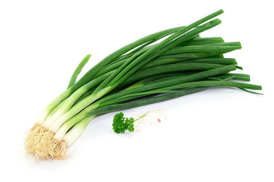 Какие витамины содержатся в луке