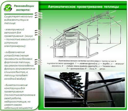 Термопривод для теплиц — особенности и преимущества эксплуатации