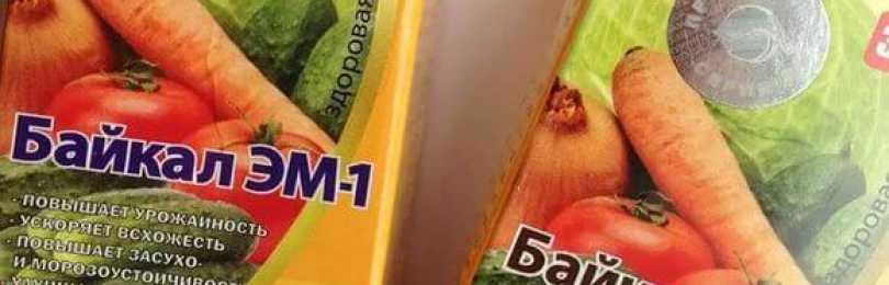 Байкал эм-1 — незаменимый помощник огородника