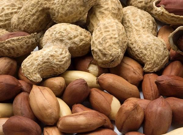 Земляной арахис: польза и вред ореха, противопоказания к употреблению