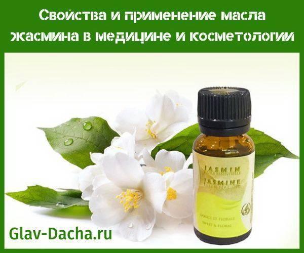 Свойства и применение масла жасмина в медицине и косметологии