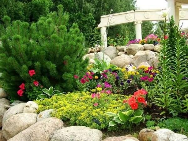 Альпийская горка: своими руками альпийская горка с камнями и декоративными растениями