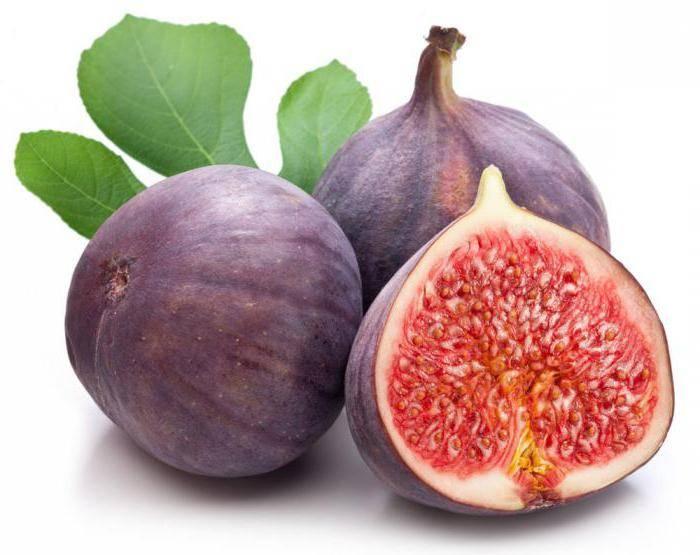 Польза инжира: природный стимулятор и натуральное лекарство без противопоказаний
