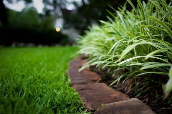 Осенний газон: готовим траву к зимовке