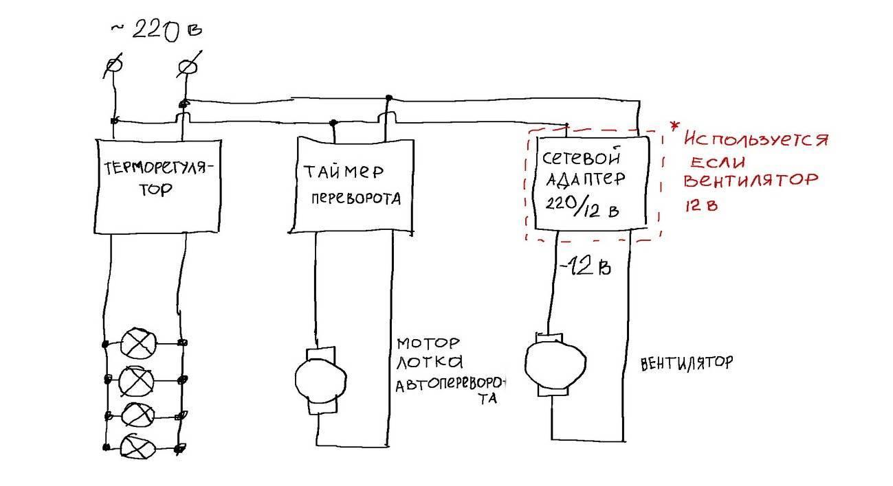 Принцип работы и преимущества инкубаторов «блиц»