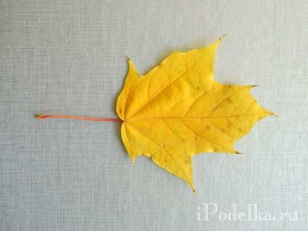 Розы из кленовых листьев поэтапно. как сделать розы из кленовых листьев красиво? устанавливаем розочку в горшочек