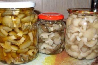 Засолка грибов на зиму в банках: рецепты
